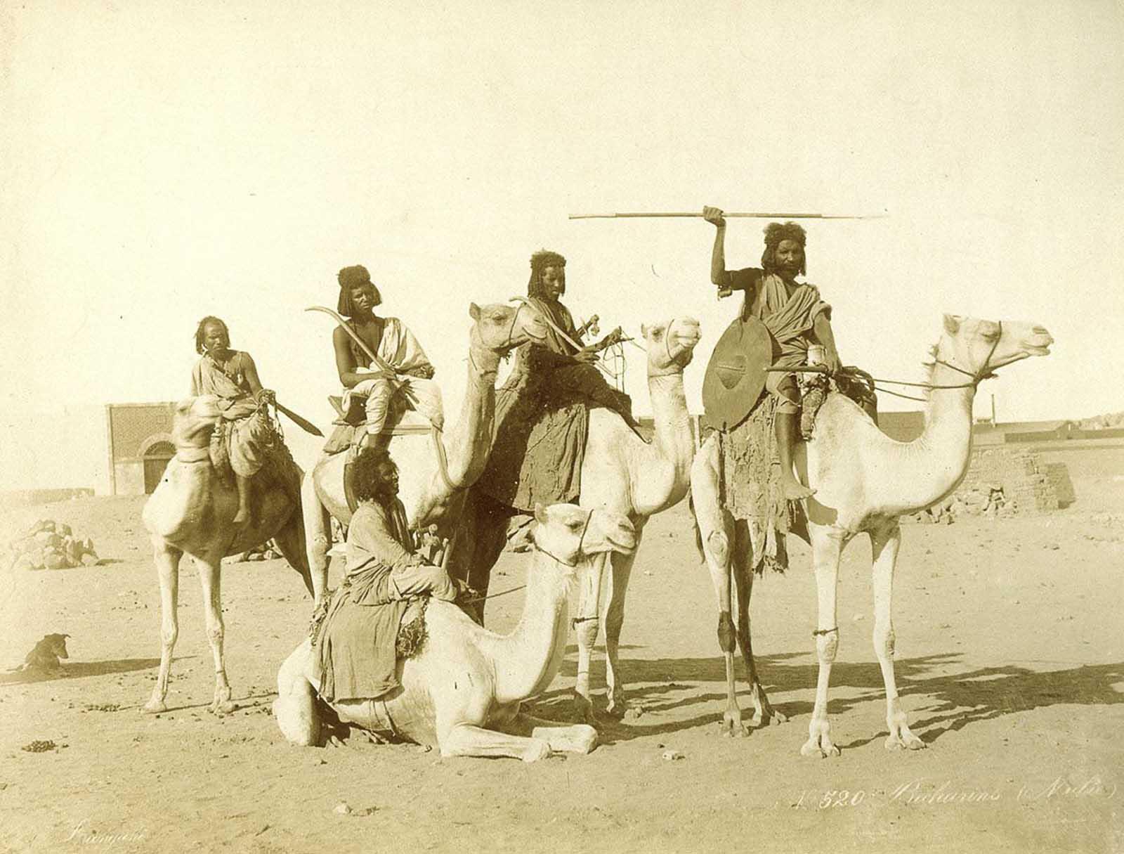 Des images magnifiques, de l'Egypte par les frères Zangaki, 1870-1890