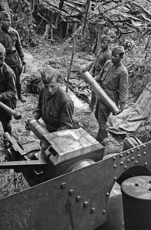 Les soldats du calcul de l'obusier soviétique ML-20 préparent un canon pour la bataille à une position près de Moscou. Septembre 1941