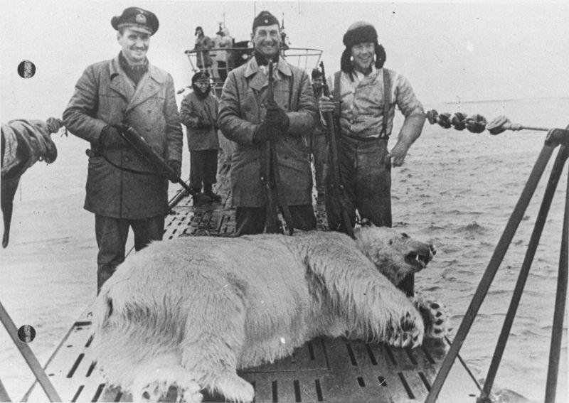 Des sous-mariniers allemands posent à côté d'un ours polaire tué dans l'océan Arctique. 29 septembre 1944