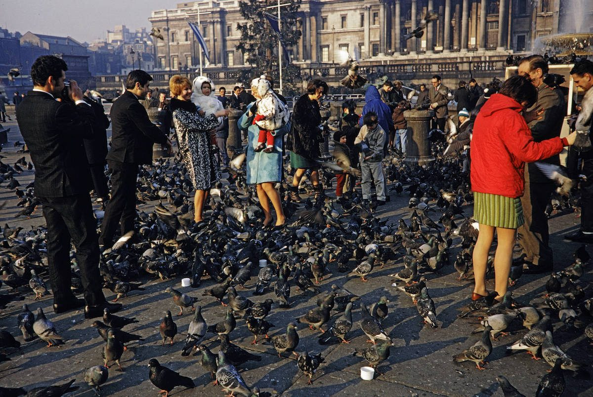 Nourrir les pigeons sur Trafalgar Square à Londres en 1967